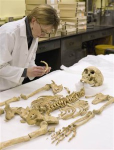 What Is A Forensic Anthropologist Top Criminal Justice Degrees